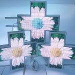 20180420_184200-150x150 Cruce Farmacie RGB